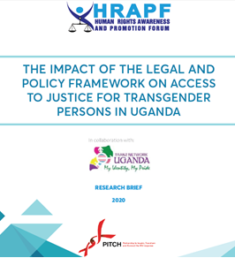 A brief of study on access to justice to transgender persons